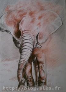 Sanguine et fusain. Éléphant dans la poussière.