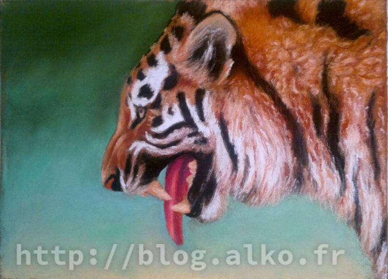 Pastels secs Tigre