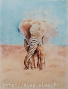 Éléphant, Pastel sec et encre de chine