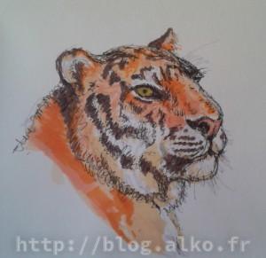 2015-02-24_feutres_tigre