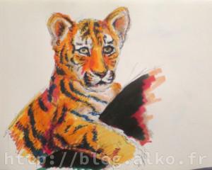 2016-01-11_feutres_tigre