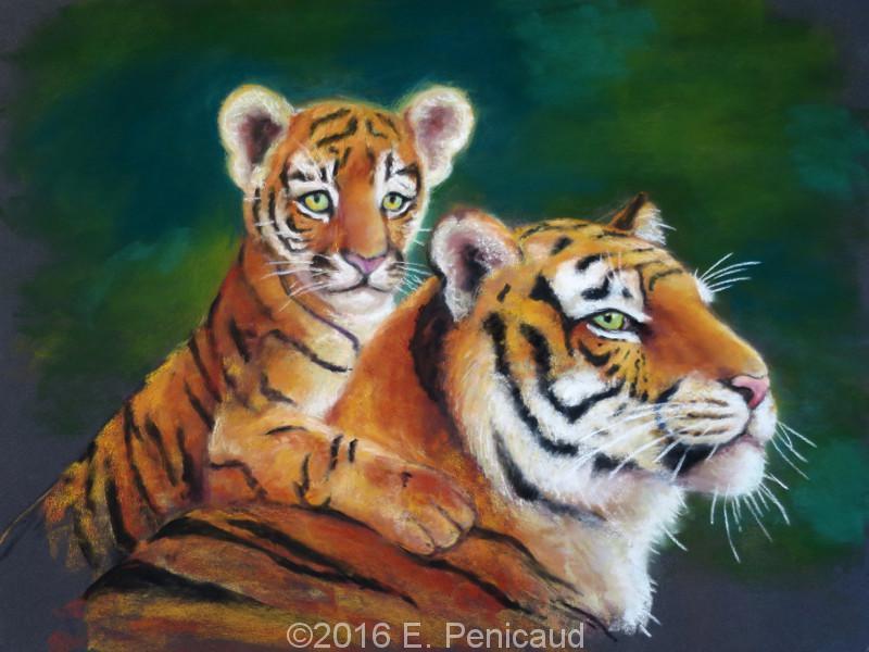 2016-11-10_pastel-sec_tigres